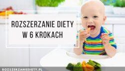 Ebook Rozszerzanie diety w 6 krokach