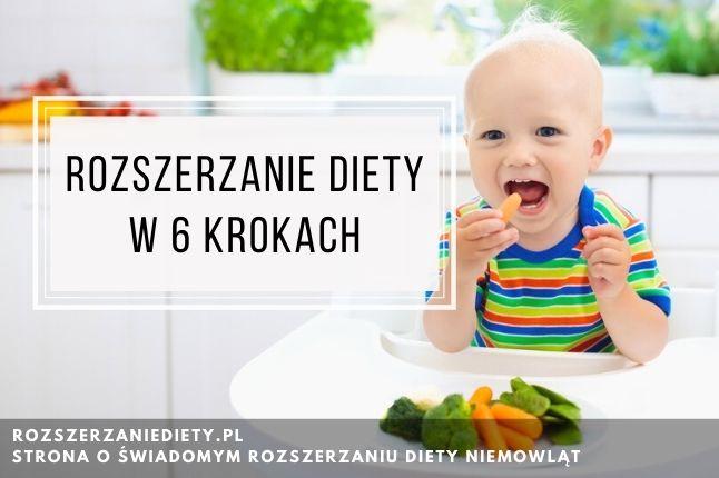 Ebook Rozszerzanie diety