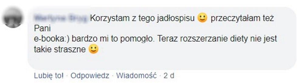 opinia ebook v2