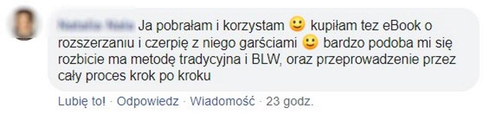 opinia ebook v3
