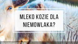 Mleko kozie dla niemowląt?